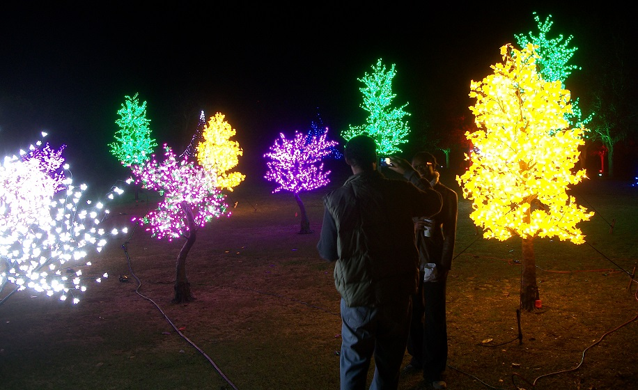 "Colorful forests invite picture-taking at ""Enchanted Airlie,"" Airlie Gardens' holiday tradition. Photos by Jonathan Spiers."