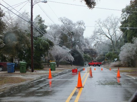 Cones surround a downed power line crossing Burnett Boulevard near the Port of Wilmington. Photo by Jonathan Spiers.