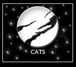 Thalian youth theater presents Cats May 14-17. Image courtesy Thalian Association.