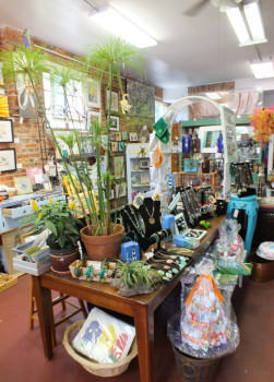 AlPhis Chic Boutique offers up an eclectic mix of farm-fresh goods and creations by local artists.