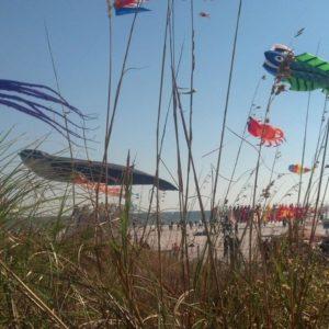 Photo Courtesy of Cape Fear Kite Festival.