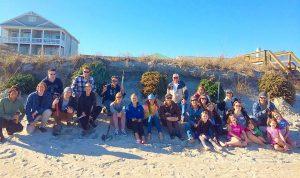 recycling-xmas-trees-for-dune-renourishment