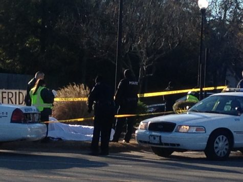 Fatal hit and run on Oleander Drive in Wilmington