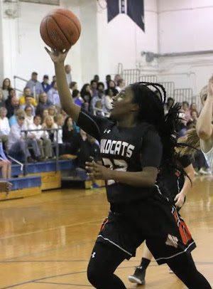 Local basketball teams learn postseason fate, playoffs tip ...