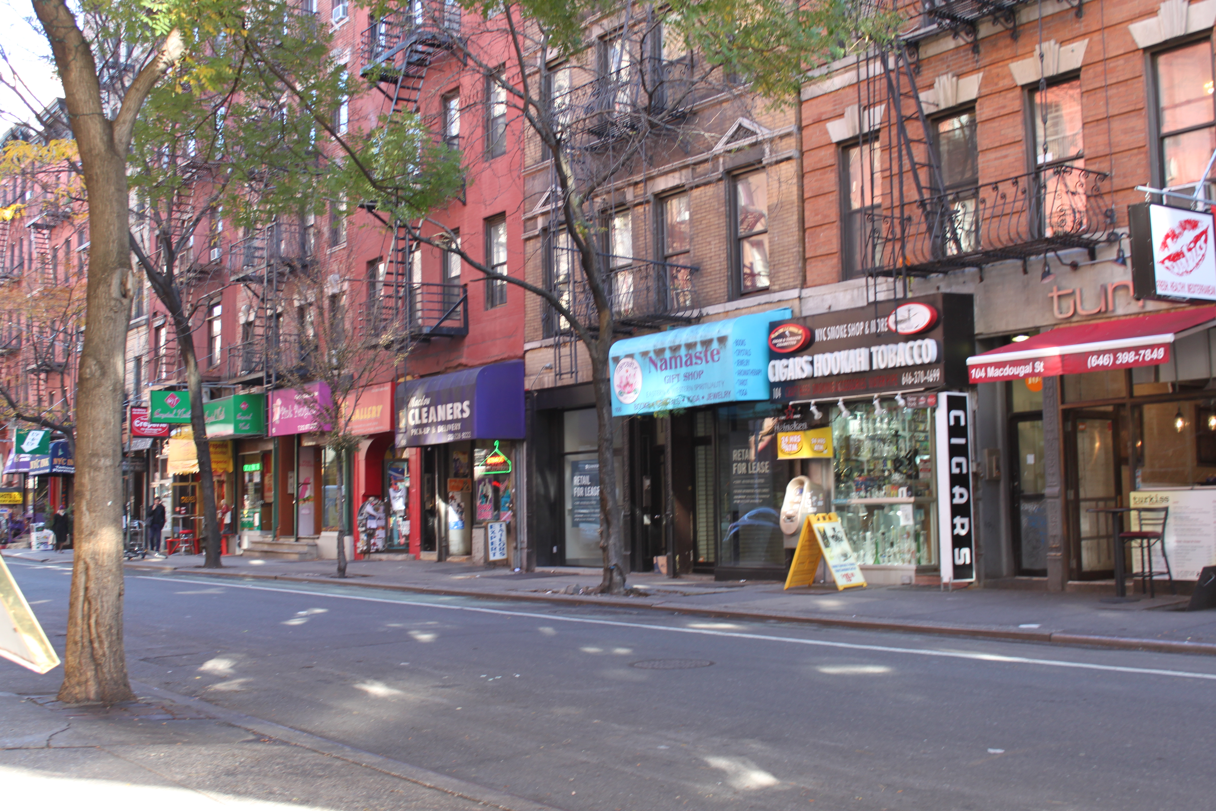 Greenwich Village in New York City. (Photos courtesy Allison Carter)