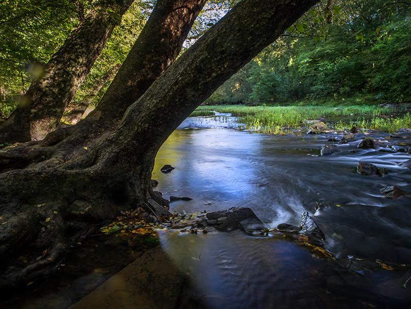 10 North Carolina State Parks That Are An Easy Trip From Wilmington