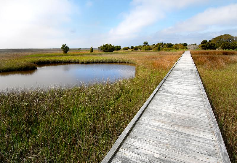 Fort Fisher State Recreation Area in New Hanover County. Photo courtesy NC State Parks