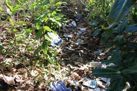 In a wooded area off of Market St., a collection of soiled clothes and blankets, empty alcohol containers and used needs paints one kind of picture of the opioid user: the homeless drug addict. (Photo Benjamin Schachtman)