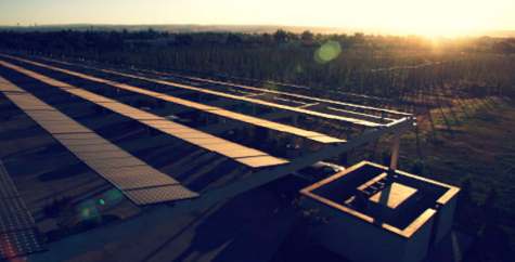 Sierra Nevada's Chico solar farm. The brewery is working to expand it's NC efforts to catch up with the wide range of sustainability efforts in their original California location. (Port City Daily photo / SIERRA NEVADA)