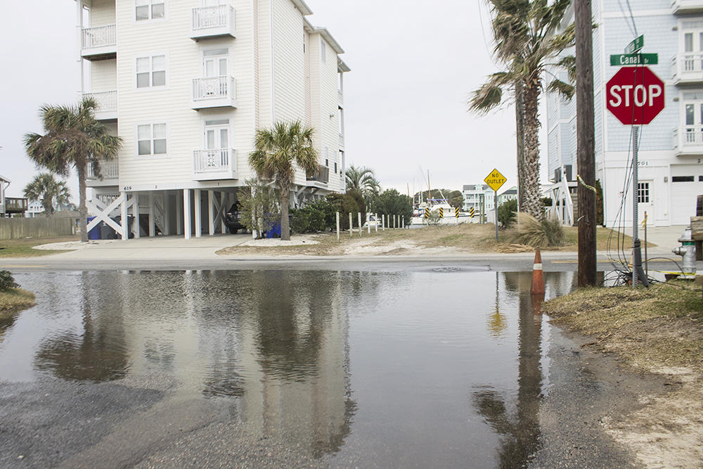 Saltwater pools on Canal Drive, pooling through malfunctioning stormwater drains in 2019. (Port City Daily photo/Johanna F. Still)