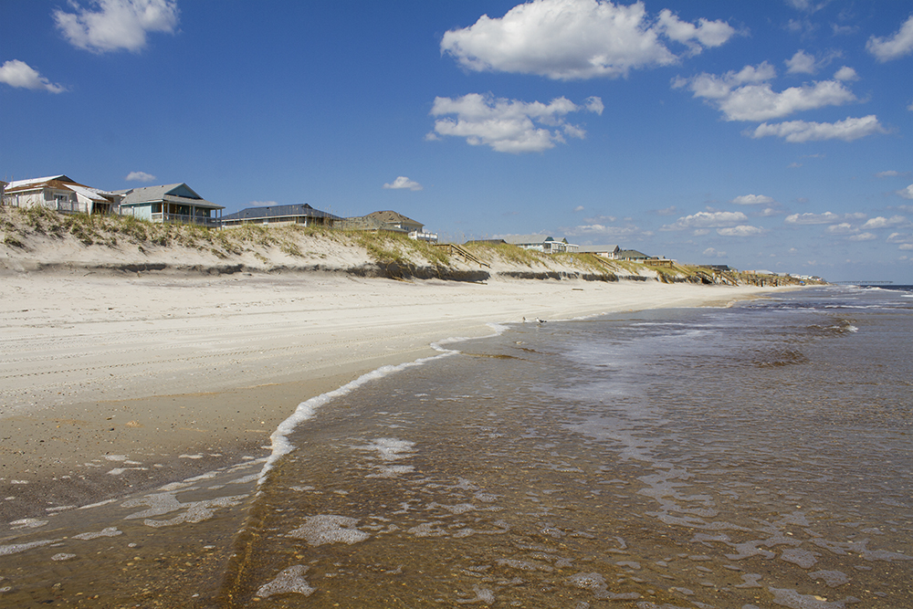 Eight simple ways to help take care of the ocean | Port City
