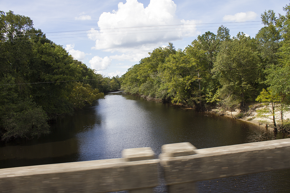 Approximately 5.25 million gallons of partially untreated wastewater spilled into the Cape Fear River near River Road in Wilmington yesterday from Cape Fear Public Utility's Southside Wastewater Plant. (Port City Daily/Johanna Ferebee)