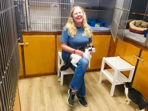 Calling All Pets Running Out Of Lives And Love Buddy Seeks A New Home Port City Daily
