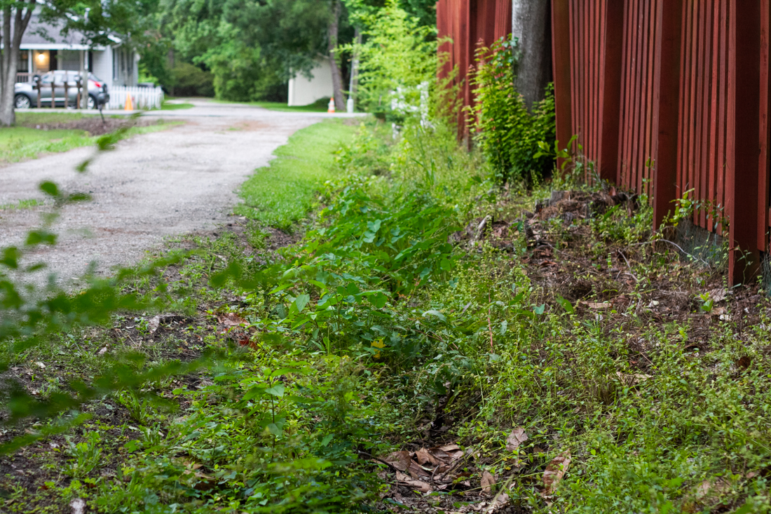 Stormwater conveyances throughout unincorporated New Hanover County will soon be surveyed and maintained by the county's new Stormwater Services program. (Port City Daily photo/Johanna F. Still)